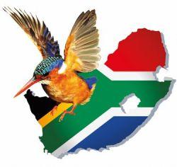 Собираемся в путешествие на юг африки